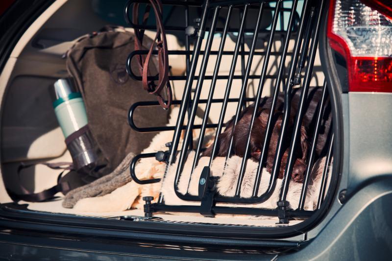 Grille de séparation pour chien
